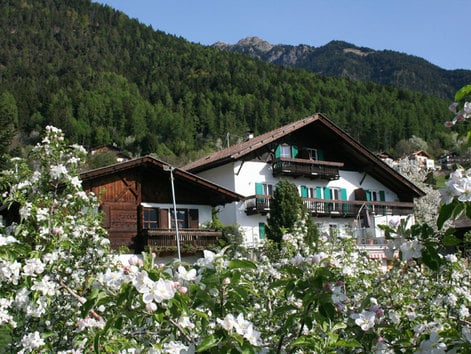 Holidays on a farm in South Tyrol